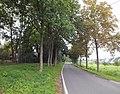 Köln Worringen Allee Alte Str.Denkmal 472.jpg
