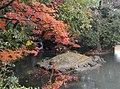 Kako-no-ike Pond - Korakuen (Okayama) - DSC01540.JPG