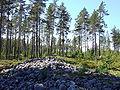 Kastellin Jatinkirkko 20090627.JPG