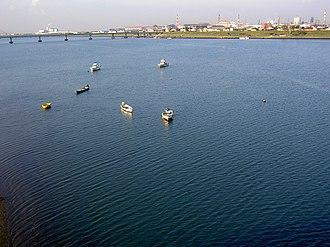Kinokawa River - The Kinokawa in Wakayama city