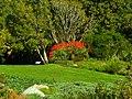 Kirstenbosch National Botanical Garden by ArmAg (12).jpg