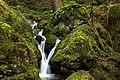 Kleiner Wasserfall in der Sächsische Schweiz.jpg