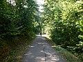 Kocher-Jagst-Radweg - panoramio (9).jpg