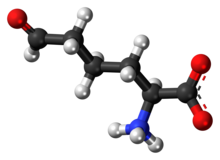 Ball-and-stick model of the L-allysine molecule as a zwitteiron