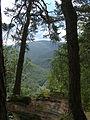 LSG Thüringer Wald Schwarzatal Blick von den Teufelstreppen DE-TH.jpg