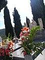 La Morrilla 2009 11 01 SolanadelPino.jpg
