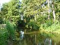 La rivière la Don aus environs de Grand'ville (Jans).jpg