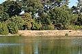 Lac supérieur du bois de Boulogne 5.jpg