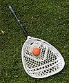 Lacrosse stick 8030.jpg
