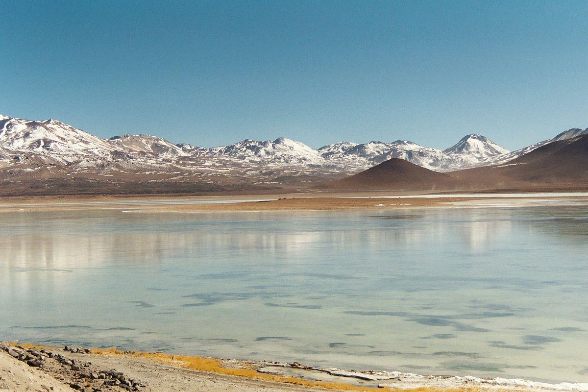 Laguna Blanca (Bolivia) - Wikipedia  Laguna Blanca (...