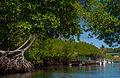 Laguna de La Restinga National Park.jpg