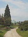 Laika ac Royal Greenhouses of Laeken (6316629985).jpg