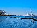 Lake Mendota - panoramio (21).jpg