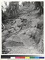 Landslide at angle of road in northeast bend of valley, the southern fork of Gualala River 3-4 of a mile above bridge, road.jpg
