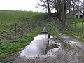 Lane, Cloghfin - geograph.org.uk - 1200473.jpg