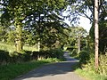 Lane leading east from Ffarmers village - geograph.org.uk - 545304.jpg