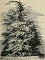 Le propriétaire-planteur; semer et planter traité pratique et économique des reboisements et des plantations des parcs et jardins (1906) (14784313733).jpg