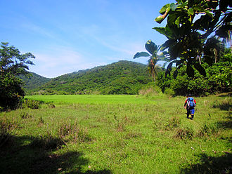 Palaui Island Protected Landscape and Seascape - Grassland interior of Palaui island