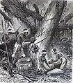 """Les merveilles de l'industrie, 1873 """"Récolte de la gutta-percha dans une fôret de la malaisie"""". (4726556841).jpg"""