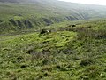 Lieh Eayst ringfort at the top of the Corrany Valley - geograph.org.uk - 58002.jpg