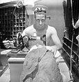 Life at Sea on Board HMS Alcantara, March 1942 CBM1049 adjusted.jpg