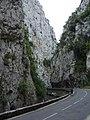Limestone gorge (1070828513).jpg