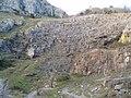 Limestone in Cheddar Gorge - geograph.org.uk - 306579.jpg