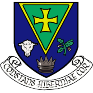 Roscommon County Council - Image: Logo contea Roscommon