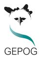 Logo GEPOG 2021.png