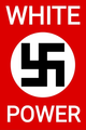 Logo of The National Socialist Party of America.png