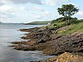 Looking South from Cumbrae Slip - geograph.org.uk - 360236.jpg