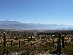 Los Cardones National Park.jpg