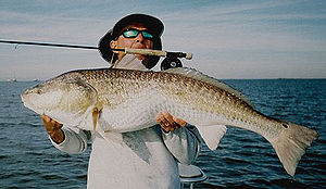 Saltwater Fly Fishing Guide Alec Griffin with ...