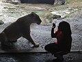 Loves animals.jpg