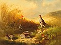 Ludwig Schuster - Partridge with Fledglings on the Mountain Pastures.jpg