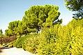 MADRID A.V.U. PARQUE PRADOLONGO - panoramio (23).jpg