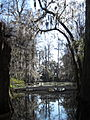 Magnolia Plantation and Gardens - Charleston, South Carolina (8555456837).jpg