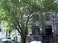 Maisons Janvier-Arthur-Vaillancourt 04.jpg