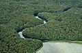 Mararoa River Swingbridge - panoramio.jpg