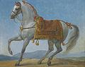 Marengo, Napoleon Bonaparte's Arab Stallion by Antoine-Jean, Baron Gros.jpg