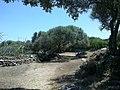 Minorque Talati Dalt Grotte II - panoramio.jpg