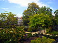 Mitchell Park, Sheridan-Kalorama.jpg