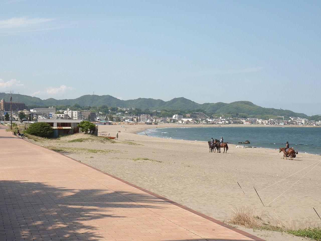 三浦 海岸 駐 車場