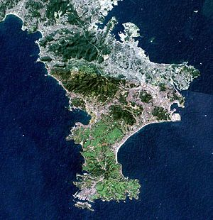 Miura Peninsula - Landsat image with high-resolution data from Space Shuttle.