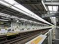 Miyamaedaira Station Platform-2.jpg