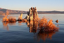 A rock formation rises from the surface of a calm lake.  Plantlife appears to grow from around the rocks.  In the distance, the horizon is filled with steep hills and small mountains.  The sky is blue, and the sun appears to be low, casting long shadows across the image.  The rocks and plantlife appear sandy in colour.