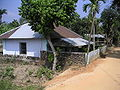 Mosquetripura (51).JPG