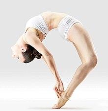 220px Mr yoga upward facing bow pose yoga asanas Liste des exercices et position à pratiquer