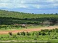 Msembe airstrip.jpg