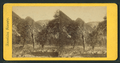 Mt. Lyell, Tuolumne Valley, from Robert N. Dennis collection of stereoscopic views.png